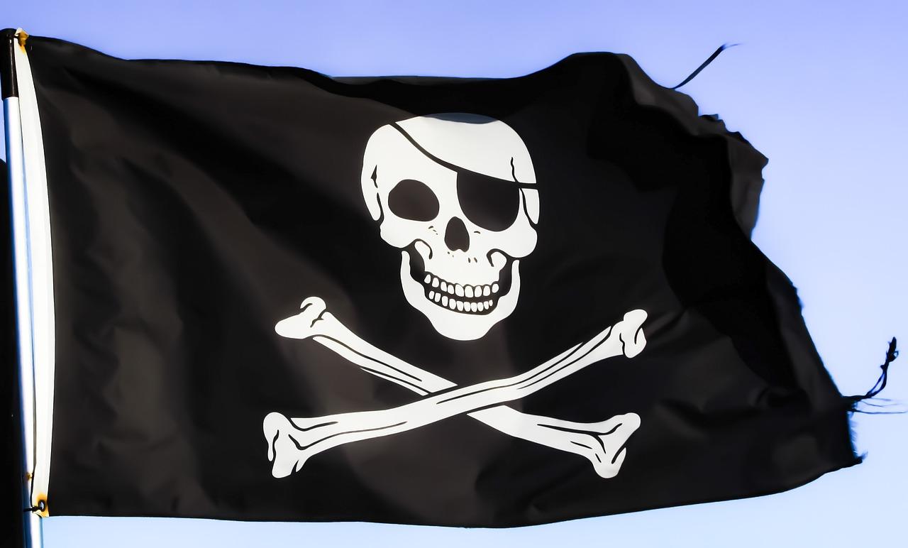 Можно ли противостоять пиратам в интернет-бизнесе?