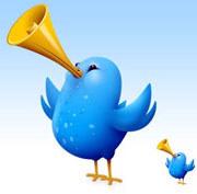 Твиттер и Твитс